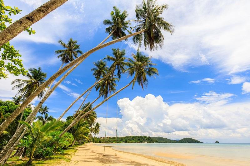 泰國麥島的環境永續管理