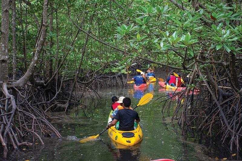 泰國綠色旅遊推薦 - 安達曼珍珠普吉島